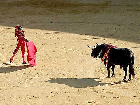 Miguel Ángel Perera fäktar sin första tjur.
