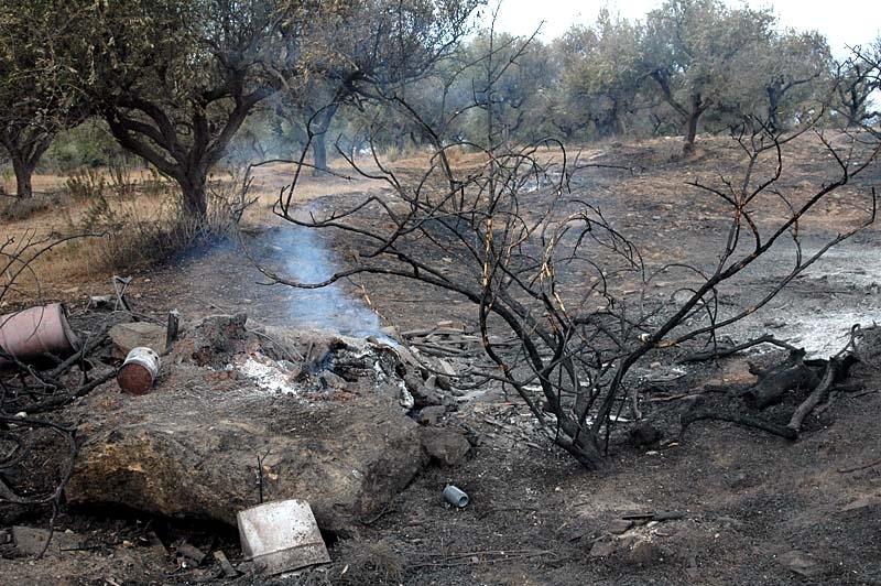 Morgonen efter den dramatiska natten i Entrerríos var marken fortfarande varm, med enskilda eldhärdar.