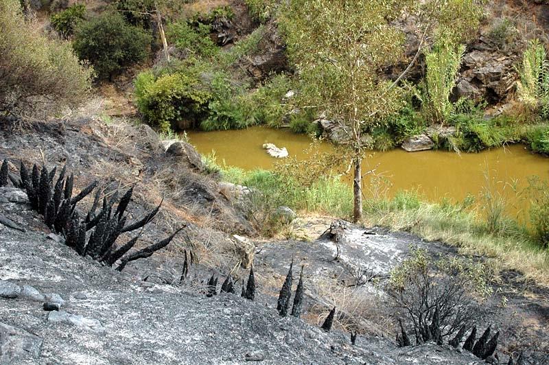 Vattnet i floden mellan Campo América och Campo Europa kunde inte hindra lågornas framfart.