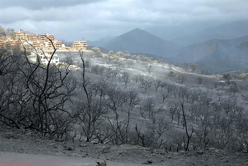 Rök och aska dominerar idag landskapet i La Mairena.