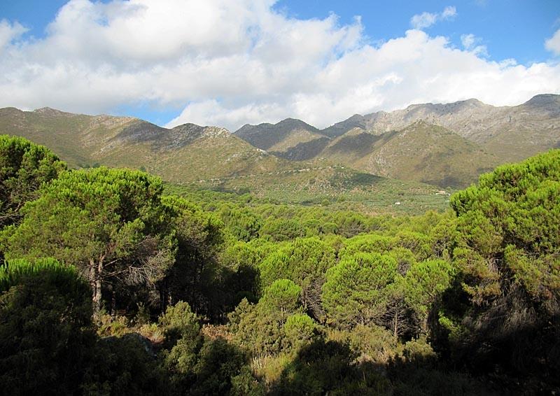 En av de sista områdena i farozonen var naturparken Refugio de Juanar. Lyckligtvis klarade sig det vackra området undan eldslågorna.
