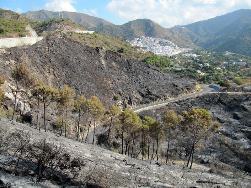 Branden spreds snabbt med vinden mot byn Ojén, som evakuerades.