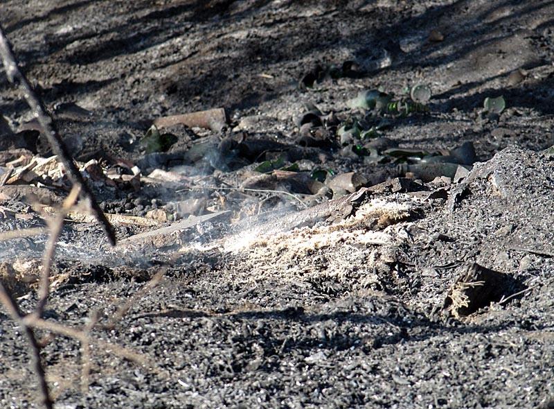 På lördagsmorgonen var det fortfarande rök kvar och mindre eldar återstod att släcka.
