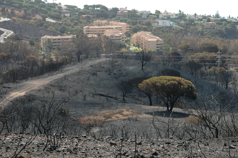 Branden tog sig söder om betalmotorvägen och var farligt nära hus intill kustvägen.
