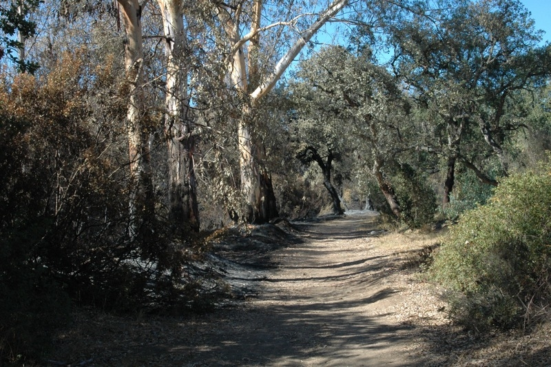 L&aring;gorna har n&aring;tt v&auml;stra sidan av stigen, inkluderat flodf&aring;ran.<br /><br />---<br /><br />Las llamas han alcanzado el lado oeste del camino, incluyendo el arroyo.