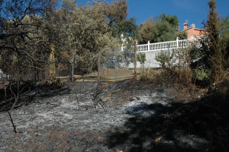 P&aring; &ouml;stra sidan om stigen har l&aring;gorna n&aring;tt staketet till vissa hus.<br /><br />---<br /><br />Al este del camino, las llamas han llegado hasta la misma verja de algunas casas.