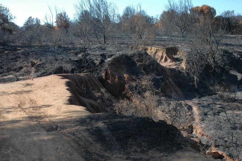 Fler bilder av förödelsen.<br /><br />---<br /><br />Más fotos del desastre.