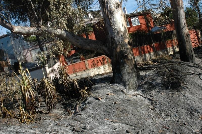 S&aring; ot&auml;ckt n&auml;ra husen kom l&aring;gorna.<br /><br />---<br /><br />As&iacute; de cerca de las casas llegaron las llamas.