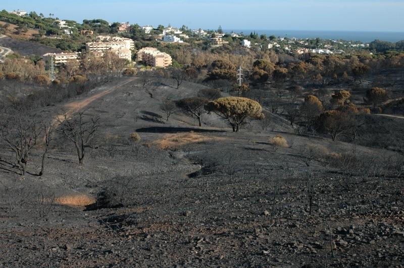 Kontrasten mellan det br&auml;nda landskapet och de gr&ouml;na tr&auml;dg&aring;rdarna i horisonten &auml;r enorm.<br /><br />---<br /><br />El contraste entre el paisaje quemado y el verde de las urbanizaciones es enorme.