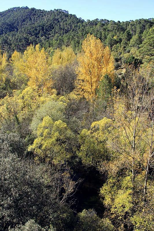 Resa till naturparken Sierras de Cazora, Segura y las Villas. Höstprakt.