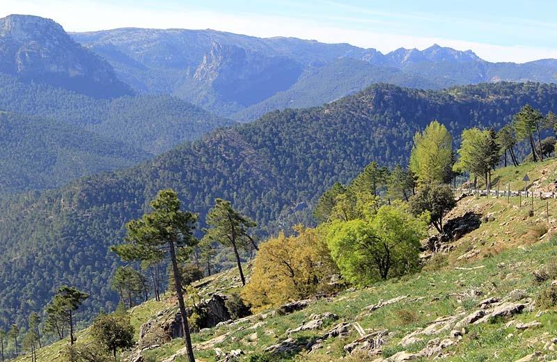 Naturparken Sierras de Cazorla, Segura y Las Villas är den största i Spanien.