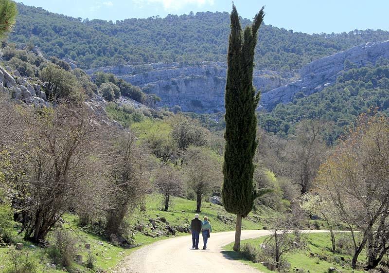 En promenad i naturparken är lika vacker som rogivande.