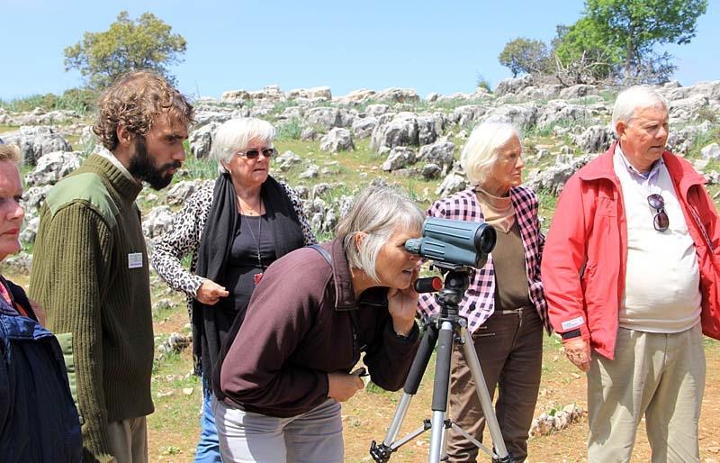 Deltagarna kunde skåda gåsgamar på samma plats där Félix Rodríguez de la Fuente filmat kända dokumentärer.