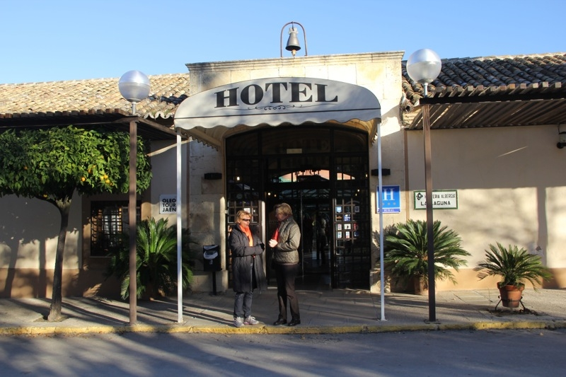 Foto från Sydkustens tredje resa till Jaénprovinsen, i samband med olivskörden 2014. HACIENDA LA LAGUNA (BAEZA) Fotograf: Richard Björkman