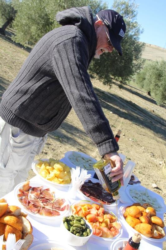 Foto från Sydkustens tredje resa till Jaénprovinsen, i samband med olivskörden 2014. OLIVSKÖRD (BAEZA) Fotograf: Richard Björkman