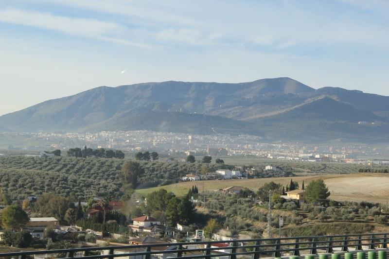 Foto från Sydkustens tredje resa till Jaénprovinsen, i samband med olivskörden 2014. JAÉN Fotograf: Richard Björkman