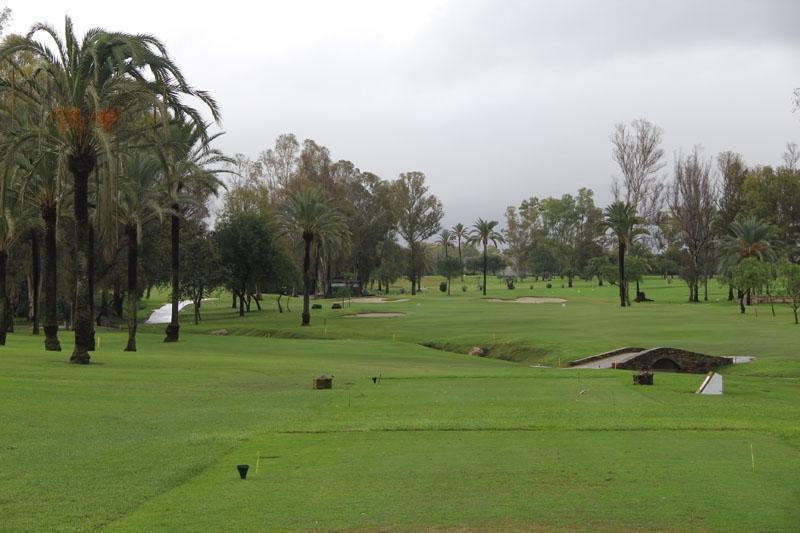Foto från SK-golfen 20 november 2018 på El Paraíso Golf.