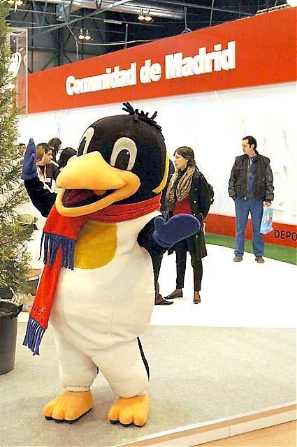 Vad har pingviner med Madrid att göra? Jo, sådana finner man på nöjesparken Warner.