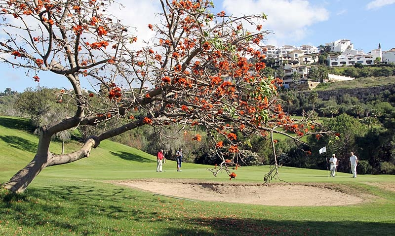 Partävlingen på Los Arqueros Golf fick skjutas upp en vecka och spelades till slut i vacker inramning.