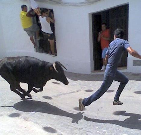 Mer än hälften av byfesterna med tjurar i Spanien hålls i samhällen i Valencia.