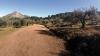 Många söndagsfirare promenerar på den bekväma jordvägen från Refugio de Juanar till utsiktsplatsen Cruz de Juanar, ovanför Marbella.