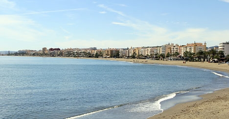Den gripna 57-åringen hade satt ut mer än hundra falska lägenhetsannonser i Estepona.