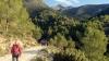 Vandringen startar på jordväg längs vacker pinjeskog. Pico del Cielo har man hela tiden i sikte.