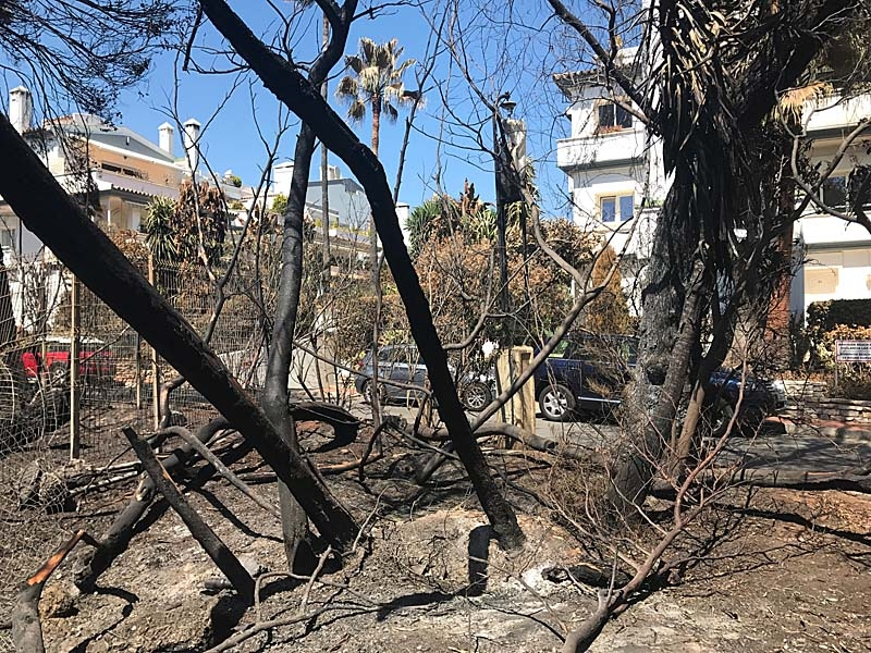 Branden vid Dominion Beach där ett flertal svenskar bor nådde husknutarna.