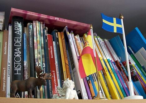 Kommunavdelningen i Las Chapas tar gärna emot svensk skönlitteratur till sitt nya internationella bibliotek Böckerna måste dock vara i nyskick.