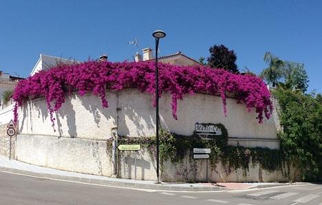 Olyckan inträffade vid ett villabygge i Elviria, i östra Marbella.