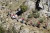 Vandringen organiserades av äventyrsföretaget Descubre Guías del Sur.