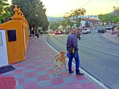 Drygt 30 hundar ska ha förgiftats i La Campana, i Nueva Andalucía, sedan början av oktober. Det är i dagsläget en ovanlig syn att se ägare med sina djur i byn.