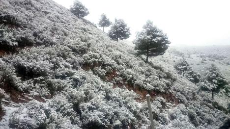 Så här så bergen kring Almuñécar ut på måndagsmorgonen 8 januari. Foto: Ayto de Almuñécar