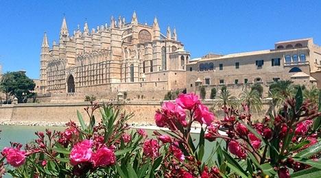 De smittade har alla besökt samma restaurang i Palma de Mallorca.
