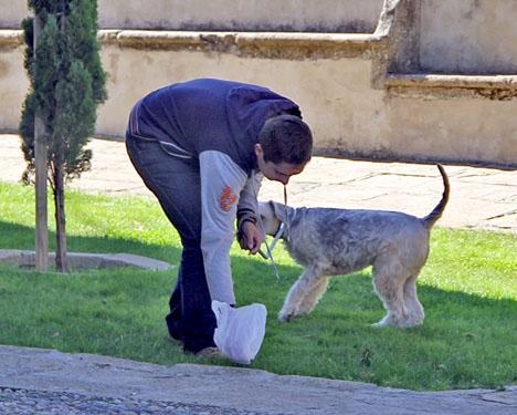 Hundägare i Málaga kan nu bötfällas inte bara för att ej plocka upp spill efter sina djur, utan även om de inte DNA-registrerat vovven.