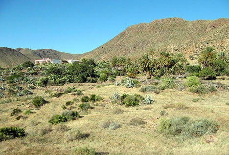 Det senaste morddramat i Spanien inträffade i idylliska Cabo de Gata, i Almeríaprovinsen.