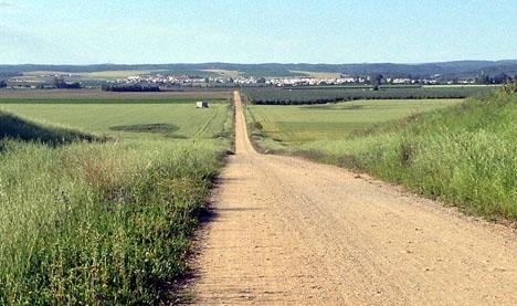Ett av dödsfallen inträffade vid samhället Guillena, norr om Sevilla.