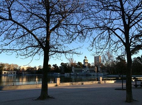 Fyra personer har dödats de senaste fyra åren av fallande grenar eller träd i Retiroparken i Madrid.