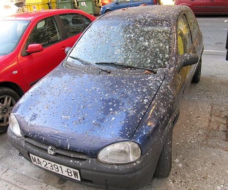 Trots att många bilar överges på öppen plats är det administrativt omständligt att forsla bort dem.