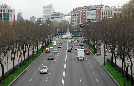 Ytterligare uppemot 800 träd ska fällas vid La Castellana, i Madrid.