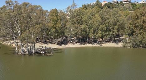 Sköldspaddssjön Lago de Las Tortugas i Nueva Andalucía (Marbella) har en egen playa.