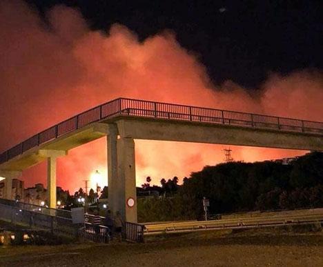 Branden utbröt natten till 30 juli. Foto: Protección Civil Manilva