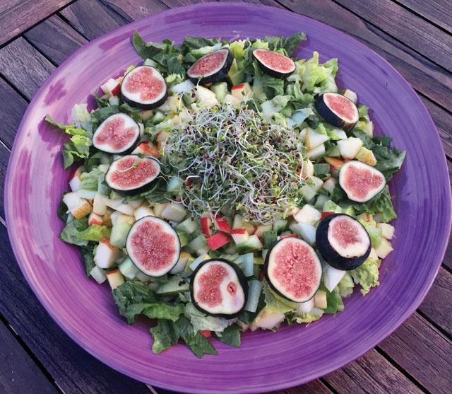 Enligt Inger Holmqvist äter västerlänningar som regel för lite fibrer. Vi behöver inte alla bli veganer, men tonvikten bör läggas på frukt och grönsaker i kosten. Foto: Inger Ginger