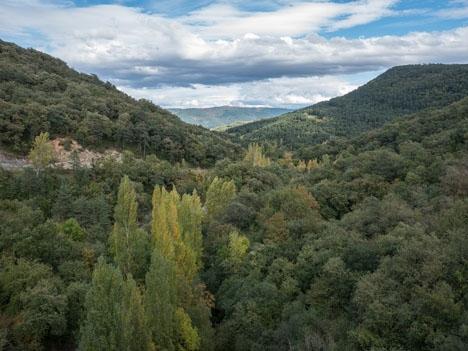 Mer än halva Baskien är täckt av skog. Foto: Basotxerri/Wikimedia Commons