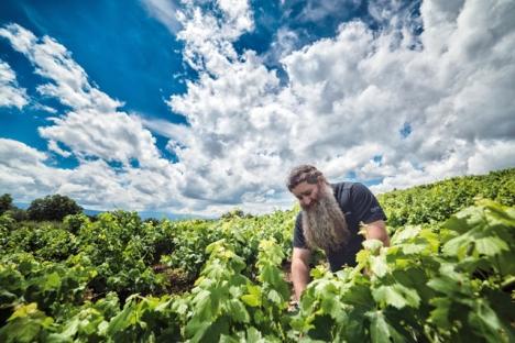 Raúl Pérez har revolutionerat vinbranschen i Spanien och har till och med erkänts av franska experter. Foto: Studio LRX