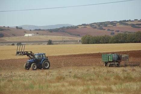 Den säsongspräglade jordbrukssektorn bjuder på många svängningar när det gäller sysselsättningen.