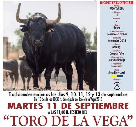 Kommunledningen i Tordesillas (Valladolid) hade överklagat förbudet av Toro de la Vega.