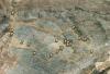 Den stora cirkulära leden som startar norr om El Torcal är 20 kilometer lång, med stora höjdskillnader.