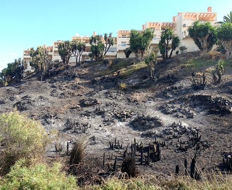 Den gripne mannen misstänks ha orsakat åtta naturbränder i Mijas på mindre än två månader. ARKIVBILD