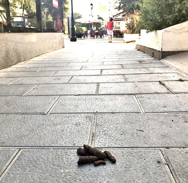 Benalmádena kommun tar nu i med hårdhandskarna, eller åtminstone plasthandskar, mot djurspill på gatorna.